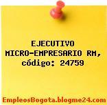 EJECUTIVO MICRO-EMPRESARIO RM, código: 24759
