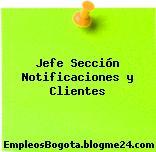 Jefe Sección Notificaciones y Clientes