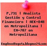 P.731 | Analista Gestión y Control Financiero | AEK-848 en Metropolitana | EM-707 en Metropolitana