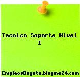 Tecnico Soporte Nivel I