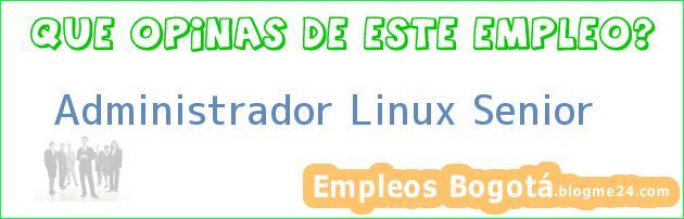 Administrador Linux Senior