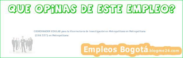 COORDINADOR EDULAB para la Vicerrectoría de Investigación en Metropolitana en Metropolitana   [CKH.537] en Metropolitana