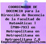 COORDINADOR DE DOCENCIA para la Dirección de Docencia de la Facultad de Matemáticas | [PHM-793] en Metropolitana en Metropolitana en Metropolitana Z.6