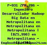 P-931 ZPR.786 – Ingeniero Desarrollador Hadoop Big Data en Metropolitana en Metropolitana en Metropolitana | [BZS.998] en Metropolitana – [E.428]