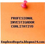 PROFESIONAL INVESTIGADOR CUALITATIVO