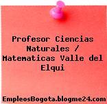 Profesor Ciencias Naturales / Matematicas Valle del Elqui