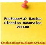 Profesor(a) Basica Ciencias Naturales VILCUN
