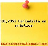 (U.735) Periodista en práctica