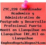 ZYC.220 Coordinador Academico y Administrativo de Postgrado y Desarrollo Profesional Puerto Montt en Llanquihue en Llanquihue [RC.01] en Llanquihue