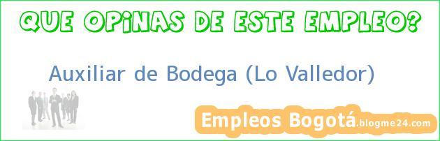 Auxiliar de Bodega (Lo Valledor)