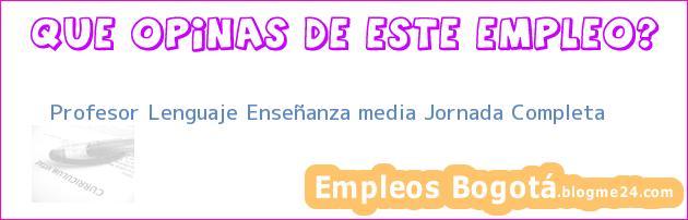 Profesor Lenguaje Enseñanza media Jornada Completa