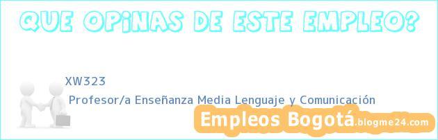 XW323 | Profesor/a Enseñanza Media Lenguaje y Comunicación