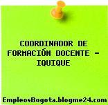 COORDINADOR DE FORMACIÓN DOCENTE – IQUIQUE