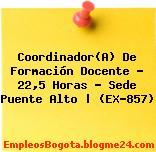 Coordinador(A) De Formación Docente – 22,5 Horas – Sede Puente Alto | (EX-857)