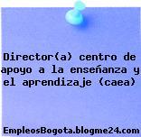 Director(a) centro de apoyo a la enseñanza y el aprendizaje (caea)