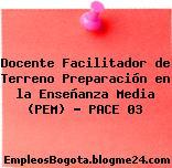 Docente Facilitador de Terreno Preparación en la Enseñanza Media (PEM) – PACE 03