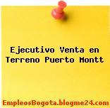 Ejecutivo Venta en Terreno Puerto Montt