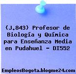 (J.843) Profesor de Biología y Química para Enseñanza Media en Pudahuel – DI552