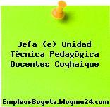 Jefa (e) Unidad Técnica Pedagógica Docentes Coyhaique