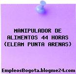 MANIPULADOR DE ALIMENTOS 44 HORAS (ELEAM PUNTA ARENAS)