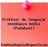 Profesor de lenguaje enseñanza media (Pudahuel)
