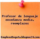 Profesor de lenguaje enseñanza media, reemplazos
