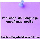 Profesor de Lenguaje enseñanza media