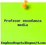Profesor enseñanza media