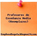 Profesores de Enseñanza Media (Reemplazos)
