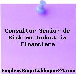 Consultor Senior de Risk en Industria Financiera