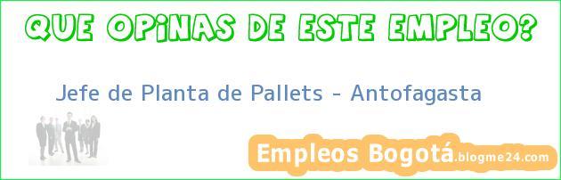 Jefe de Planta de Pallets – Antofagasta