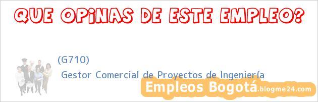 (G710) | Gestor Comercial de Proyectos de Ingeniería