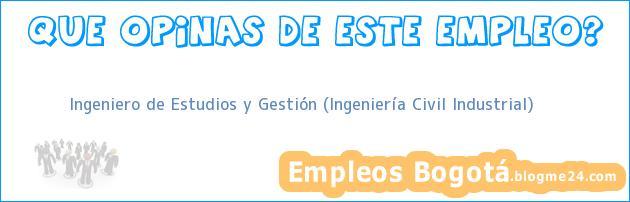Ingeniero de Estudios y Gestión (Ingeniería Civil Industrial)