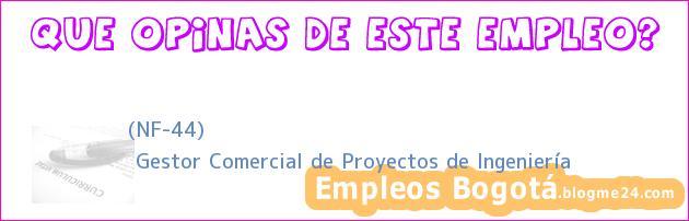 (NF-44) | Gestor Comercial de Proyectos de Ingeniería