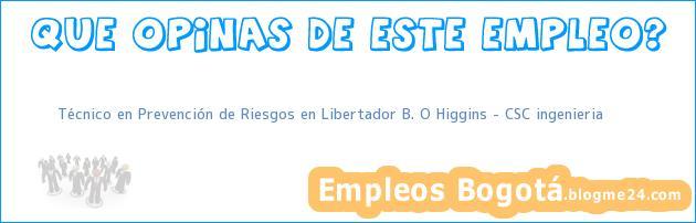 Técnico en Prevención de Riesgos en Libertador B. O Higgins – CSC ingenieria