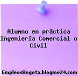 Alumno en práctica Ingeniería Comercial o Civil