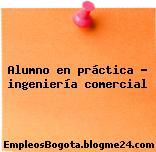 Alumno en práctica Ingeniería Comercial
