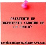 ASISTENTE DE INGENIERIA (CAMINO DE LA FRUTA)