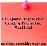 Dibujante Ingeniería Civil y Proyectos Vialidad