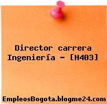 Director carrera Ingeniería – [H403]
