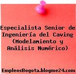 Especialista Senior de Ingeniería del Caving (Modelamiento y Análisis Numérico)