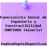 Especialista Senior de Ingenieria y Constructibilidad SANTIAGO (minería)