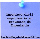 Ingeniero Civil experiencia en proyectos de Ingeniería