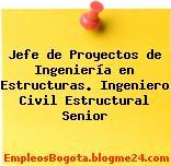 Jefe de Proyectos de Ingeniería en Estructuras. Ingeniero Civil Estructural Senior