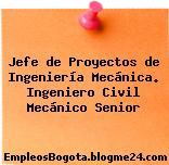 Jefe de Proyectos de Ingeniería Mecánica. Ingeniero Civil Mecánico Senior