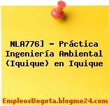 NLA776] – Práctica Ingeniería Ambiental (Iquique) en Iquique