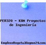 PER329 – KAM Proyectos de Ingeniería