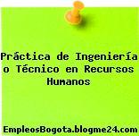 Práctica de Ingeniería o Técnico en Recursos Humanos