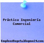 Practica Ingeniería Comercial