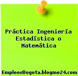 Práctica Ingeniería Estadística o Matemática